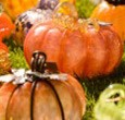 Pumpkins in the Park Giant Creative prides itself on its work with many non-profit organizations to create successful and meaningful events. We work with each organization to create a signature, […]